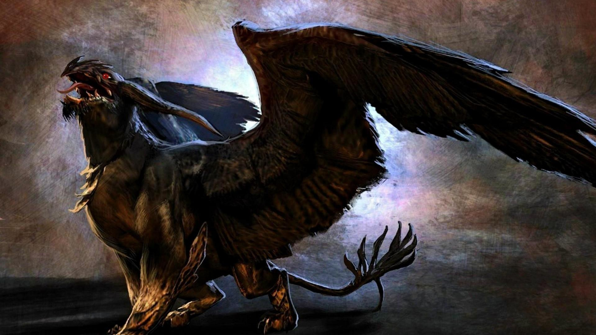 Griffins mythical creatures wallpaper 69 pictures - A picture of a griffin the creature ...